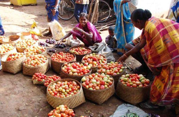 દર વરસે 63,000 કરોડની ઉપજ ખેડૂતો વેચી શકતા નથી, સરકાર ધારે તો ખેડૂતોને ઉગારી શકે છે