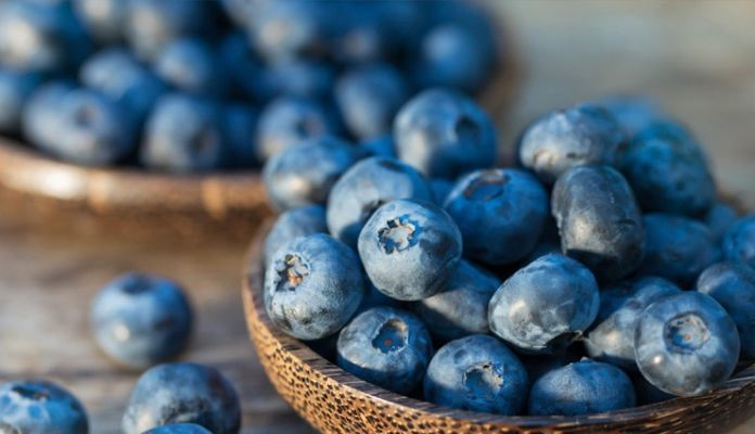 5 Food To Include In Your Diet To Fight Aging Lifeberrys English Dailyhunt