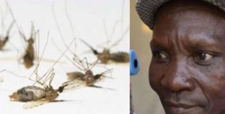 इस शख्स के पाद से मर जाते हैं मच्छर, कंपनी ने किया हायर, वैज्ञानिक भी कर रहे जांच